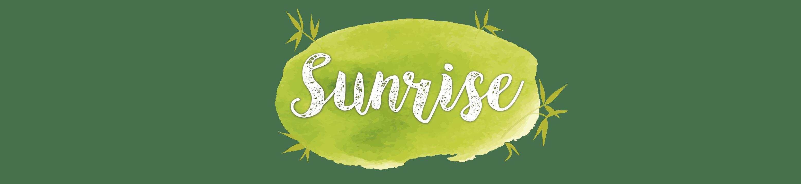 Imagen Sunrise Bambu