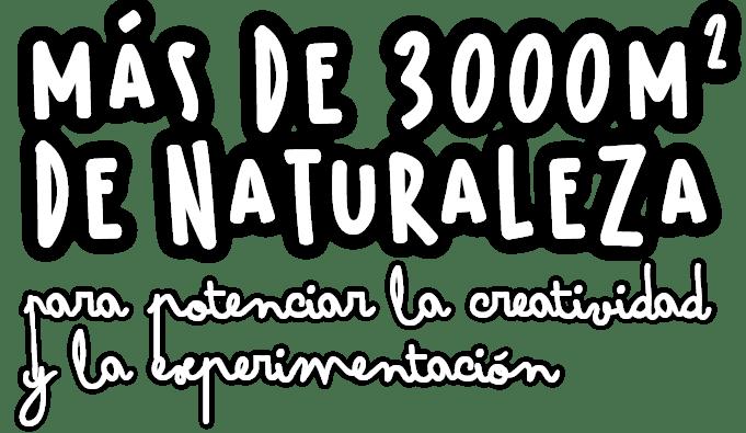 Texto Naturaleza Bambu